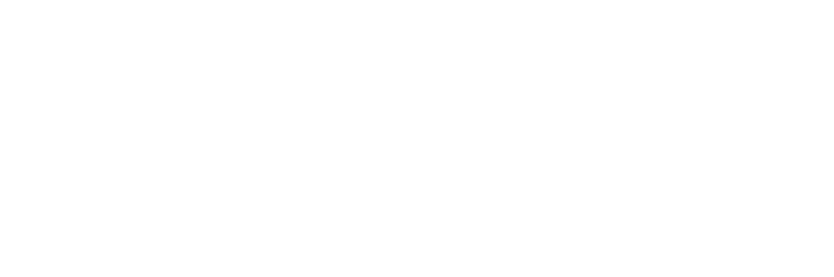 STAND BY professional car service
